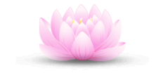 luce-bertrand-lotus